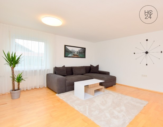 Furnished 2.5 room apartment, terrace, garden & parking in Rot an der Rot