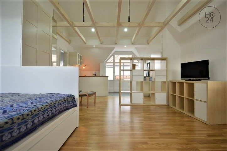 Gemeubileerde woningen met 1 kamers in Lechhausen