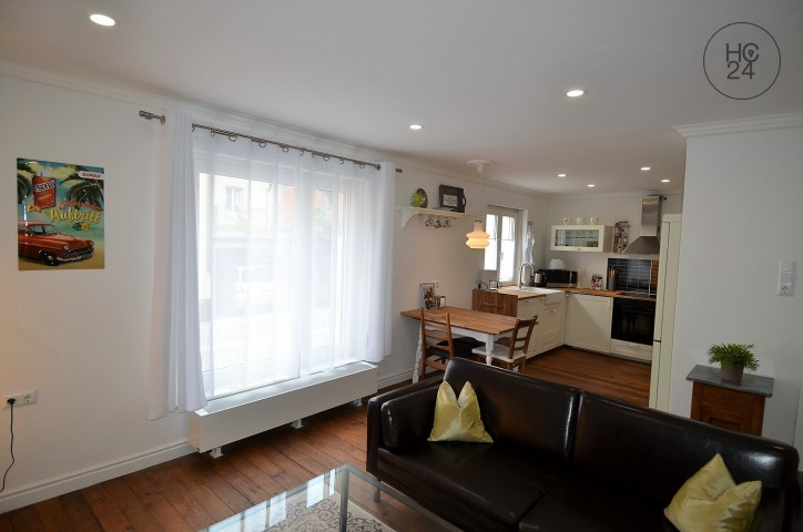 beautiful furnished flat in the city center