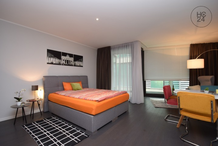 apartment is nearby the cathedral, the main station and the river Rhine