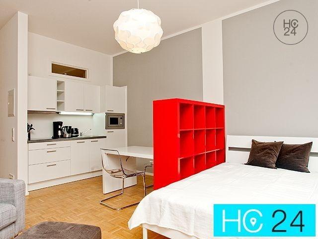меблированные апартаменты в Connewitz