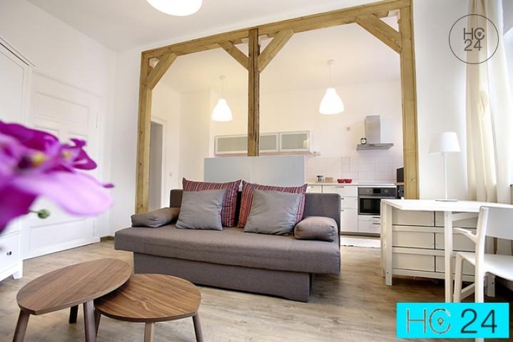 Møblert appartement i Schleußig