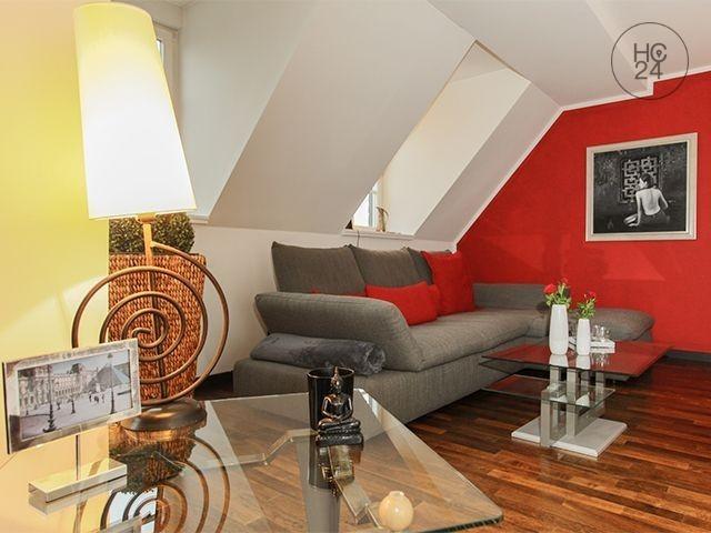 Gemeubileerde woningen met 3 kamers in Connewitz