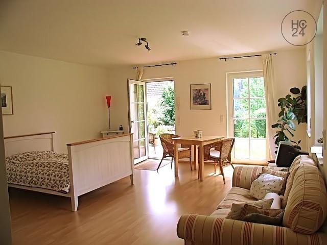 1-Zi-Appartement mit Neckarblick und Terrasse zur Zwischenmiete in Heidelberg-Ziegelhausen
