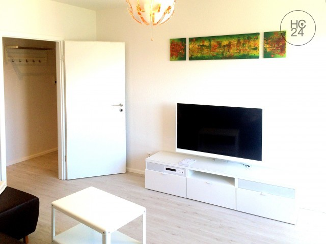 Moderne 2-Zimmer Premium Wohnung in Mannheim-Schwetzingerstadt