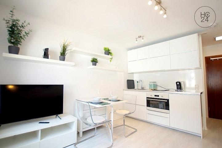 Mannheim-Neckarstadt-West: City Apartment in Mannheim-Neckarstadt-West