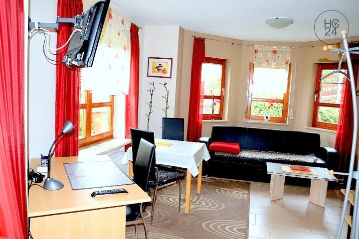 Nicely furnished 2-room flat with terrace and garden in Altdorf