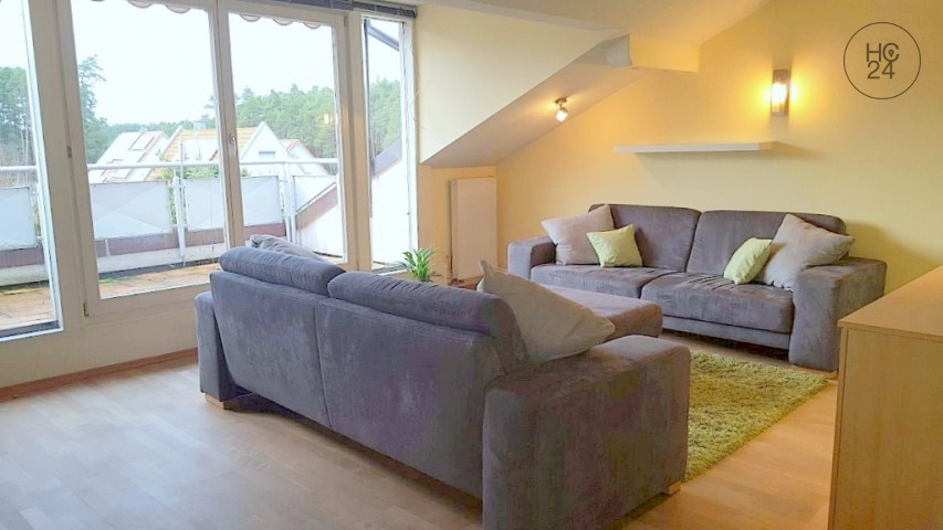 Nicely furnished apartment with roof terrace in Roth-Eckersmühlen