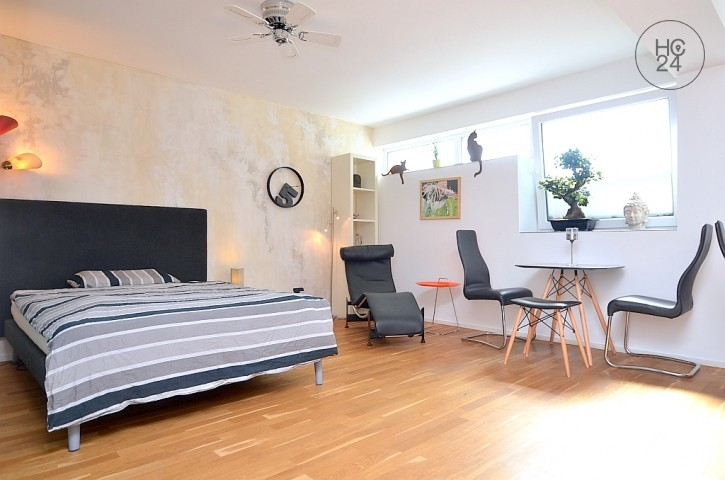 Exclusively furnished Design apartment with WiFi, patio and sauna in Gostenhof