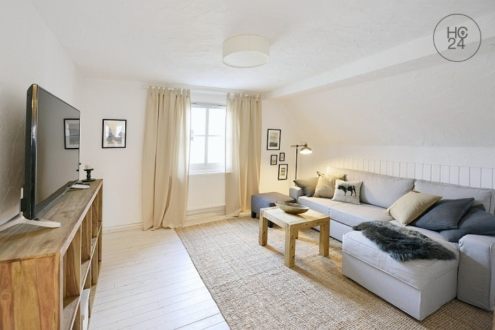 Exclusively furnished 3-room apartment with Wi-Fi in idyllic location in Nuremberg