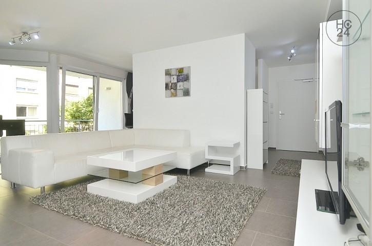 家具付き3部屋、Steinbühlの住宅
