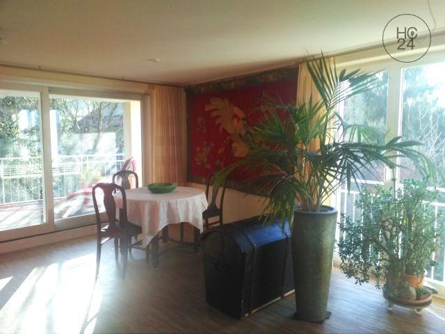 2-room apartment in Singen