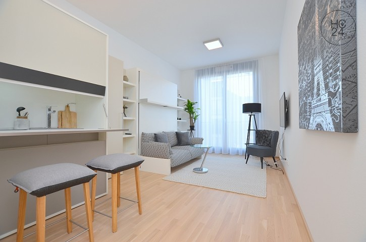 First-time occupancy: Modern furnished micro apartment in Ludwigsburg