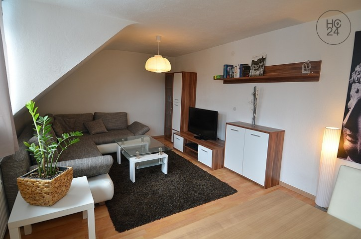 furnished 4-room apartment in Blaustein