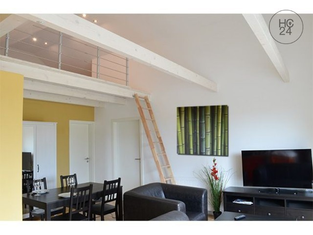 nicely furnished 2-room apartment in Neu Ulm/Gerlenhofen