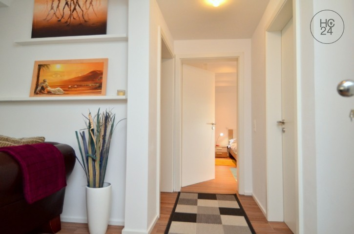 nice and partially furnished 3-room apartment in Neu-Ulm