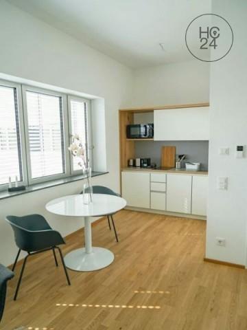 Exclusives 1 Zimmer-Apartment in TOP-LAGE von ULM