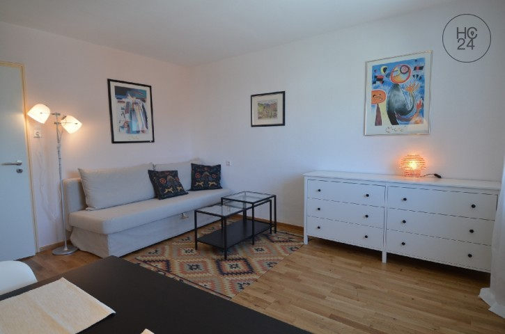 Furnished Apartment Flat For Rental Weil Am Rhein Inspiration Apartment Interior Decorating Property