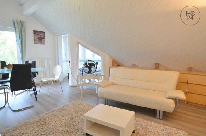 Nice and open studio style apartment in Kandern Wollbach, temporary