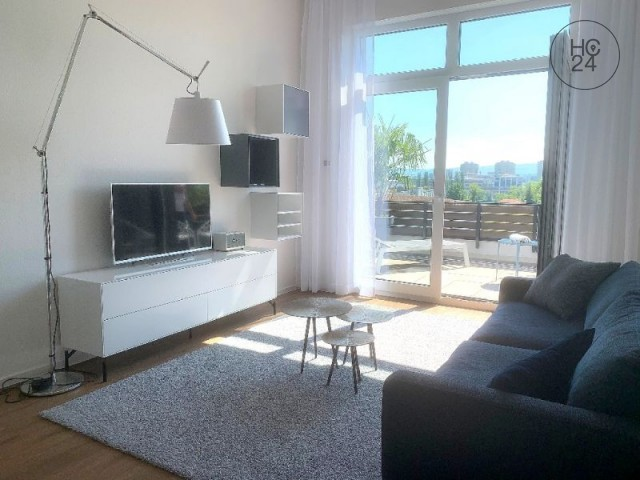 Modern, exclusive 2 rooms - penthouse flat in Grenzach-Wyhlen