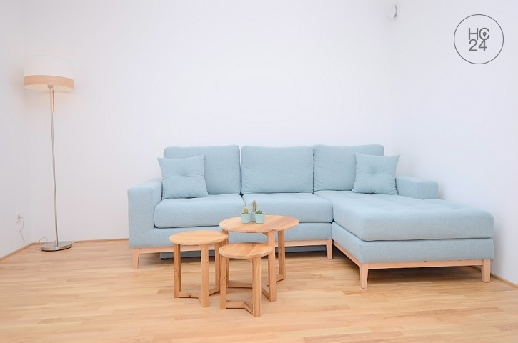 Furnished 2-room apartment with WLAN, washing machine and parking space in Nauheim