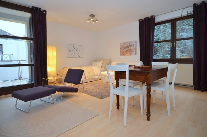 Very nice furnished 1-room apartment with internet and balcony in Wiesbaden