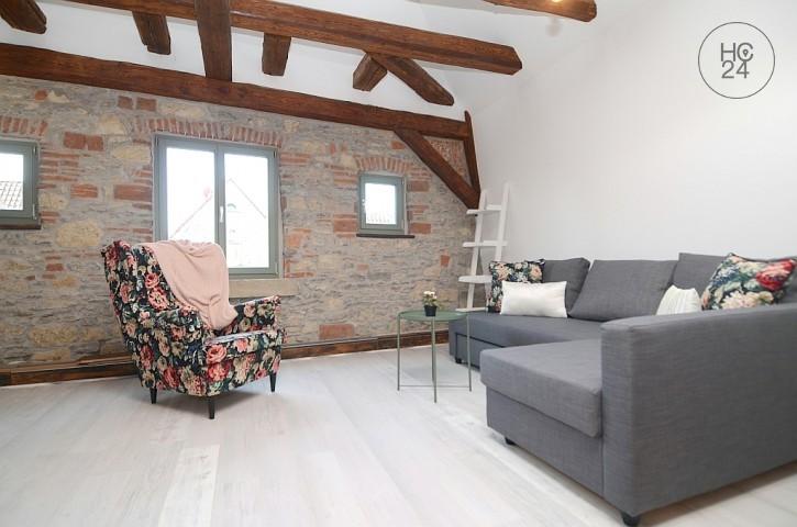 Furnished duplex apartment in Sulzfeld