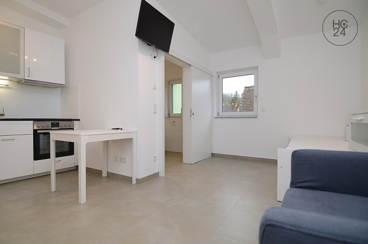NEW CONSTRUCTION! Furnished 1-room apartment in Dammbach